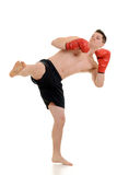 Male kick boxer kicking Royalty Free Stock Image