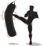 Male Kickboxer Outline Stock Photography