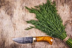 Male Kitchen Knife Handmade. Brutal knife with wooden handle. Knife for man. Kitchen knife and fresh dill Royalty Free Stock Photography