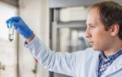 Male lab technician holding a test tube with sample Royalty Free Stock Photography
