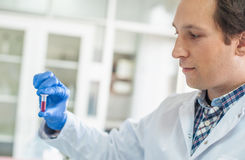 Male lab technician holding a test tube with sample Royalty Free Stock Images