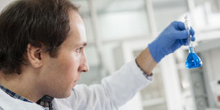 Male laboratory researcher performs tests with blue liquid Stock Images