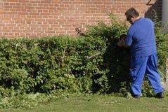 MALE LANDSCAPER. Copenhagen/Denmark/ 03 September 2015_ nale landscapers working on bushes (Photo by Francis Joseph Dean/Deanpictures Royalty Free Stock Photo