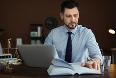 Male lawyer working royalty free stock photo