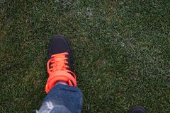 Male leg in black sneakers on a green lawn. Orange bright shoelaces Royalty Free Stock Photo