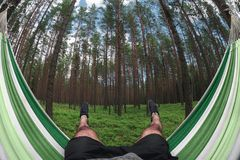 Male legs in a hammock on a background of the pine forest. Vacation concept. Point of view. Fisheye lens