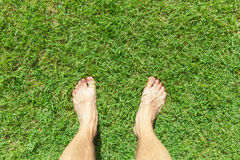 Male legs stand on green grass lawn Stock Photos