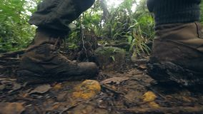 Male legs in trekking shoes walking on dirty path in rainforest while summer hike. Tourist man hiking in tropical forest stock video