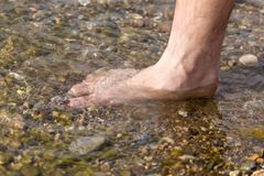 Male legs in water. In the park in nature Royalty Free Stock Images