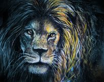 Male lion portrait pastel and charcoal art. A proud lion hand drawn in charcoal and pastel with large mane glowing in a touch of light Royalty Free Stock Photo
