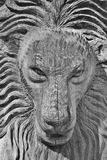 Male lion sculpture. Male lion made of wood Stock Photos