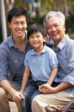 Male mång- Genenration kinesisk familjgrupp arkivfoto