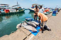 Fish market in Male, Maldives Royalty Free Stock Photo