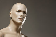 Male mannequin portrait Stock Photos
