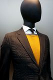 Male mannequin Royalty Free Stock Image