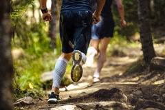 Male marathon runner running woods Stock Image