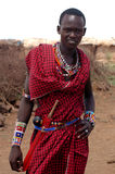 male masai Royaltyfri Bild