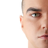 Male model. Close-up portrait of young good looking male model Royalty Free Stock Photo