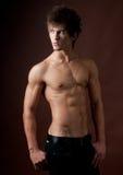 Male model. Posing in studio Royalty Free Stock Photo