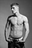 Male model. Muscled male model posing in studio Stock Photography