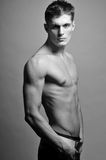 Male model Royalty Free Stock Images