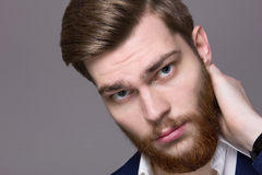 Male Model big red beard Royalty Free Stock Images