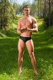 Male model in the forest. Muscled male model posing in the forest Royalty Free Stock Photos