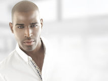 Male model head royalty free stock photos