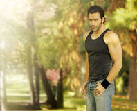 Male model in park setting royalty free stock images