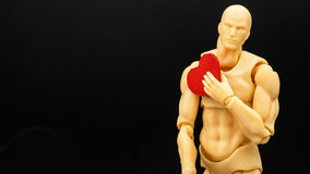Male Model. A plastic model holding a red wooden heart Stock Image