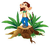 A male monkey above a stump Stock Photo