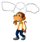 The male monkey with empty thoughts Stock Photo