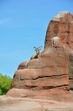 Male Mouflon (goat). A male mouflon sitting on a rock against a blue sky Stock Images