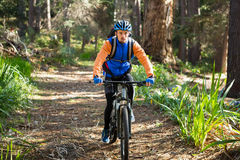 Male mountain biker riding bicycle in the forest Royalty Free Stock Photo