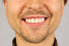 Male mouth with a smile. Beard and mustache Stock Images