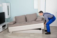 Male Mover Placing Sofa At Home. Male Mover Placing Sofa On Hardwood Floor In Living Room At Home royalty free stock images