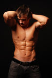 Male muscled model royalty free stock images