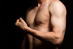Male Muscles Stock Photography