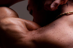 Male muscular shoulder. From behind showing definition of deltoid muscle Stock Photo