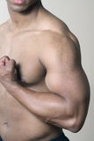 Male muscular shoulder chest and arm Stock Images