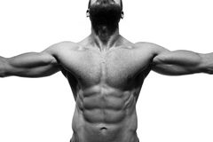 Male Muscular Torso Royalty Free Stock Photos