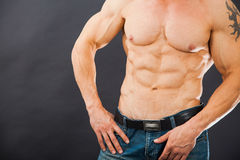 Male muscular torso with six pack abs. Amazing figure. Cutting phase Royalty Free Stock Photography