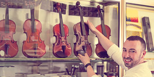 Male musician selecting classical violin Royalty Free Stock Photos