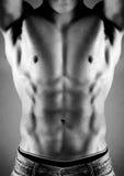 male muskulös torso Arkivfoto