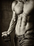 male muskulös torso Royaltyfria Bilder