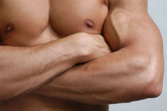 male muskulös torso Arkivbild