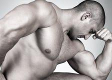 male muskulöst perfect arkivbild