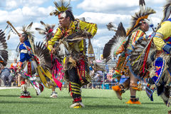 Male native American dancers at powwow. stock photos
