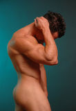 Male nude 5 Stock Photography