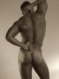 Male nude rear Royalty Free Stock Photo